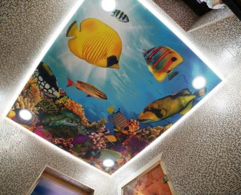 потолок с рыбами